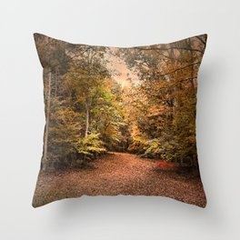 Beginning the Journey Throw Pillow