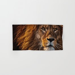 Majestic Lion Hand & Bath Towel