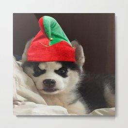 Husky Puppy Elf Metal Print