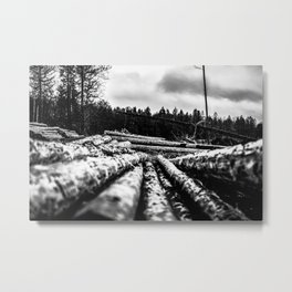 Poltery Site (Wood Storage Area) After Storm Victoria Möhne Forest 6 bw Metal Print