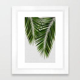 Palm Leaf II Framed Art Print