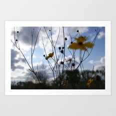 Flowers In The Clouds Art Print