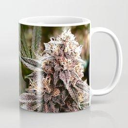 Bud and Leaf Coffee Mug
