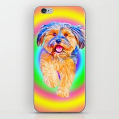 Puppy Power - Part II of Smile iPhone & iPod Skin