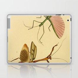 Naturalist Stick Bugs Laptop & iPad Skin