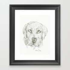 Puppy Cuddle  Framed Art Print