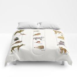 little nature friends Comforters