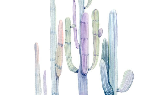 Minimalist Cactus Drawing Watercolor Painting Turquoise Cacti Pillow Sham