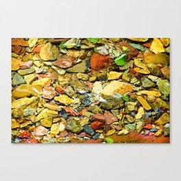 A Colorful Creek, Glacier National Park Canvas Print