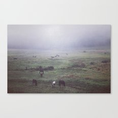 foggy days are my favorite days. Canvas Print