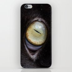 Sensei iPhone & iPod Skin