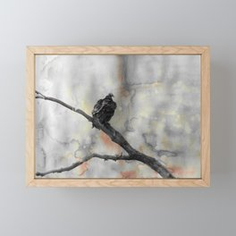 Perched Vulture Framed Mini Art Print