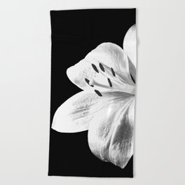 White Lily Black Background Beach Towel