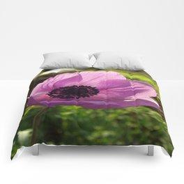 One Delicate Purple Anemone Coronaria Flower Comforters