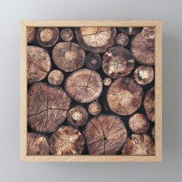 The Wood Holds Many Spirits Framed Mini Art Print
