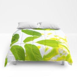Delicate walnut tree leaves Comforters