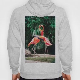Flamingo Dance (Color) Hoody