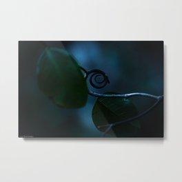 Spiral in Nature  Metal Print