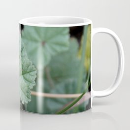 MILLCREEK CANYON, UTAH Coffee Mug
