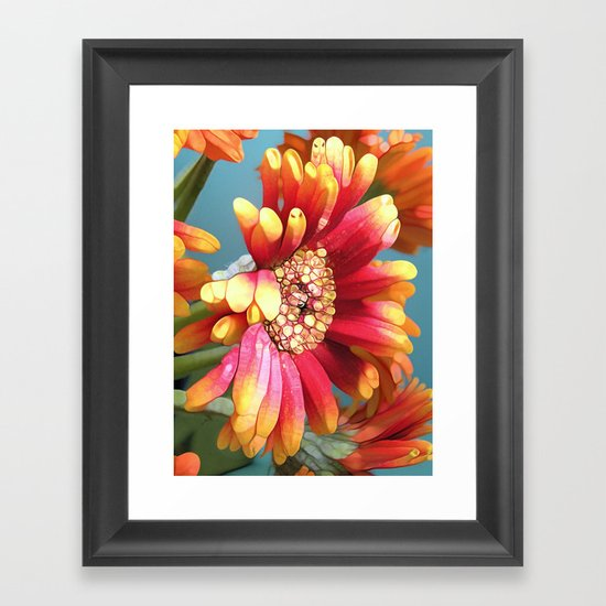 Sunny Gerbers Framed Art Print
