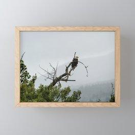 The Eagle's Throne Framed Mini Art Print