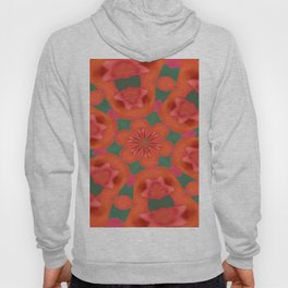 Succulent Red and Yellow Flower Abstract 2 Hoody
