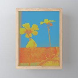 pop luffa Framed Mini Art Print