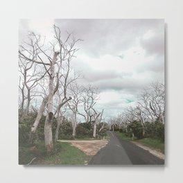 Desolate and Spooky Road in Australia Metal Print