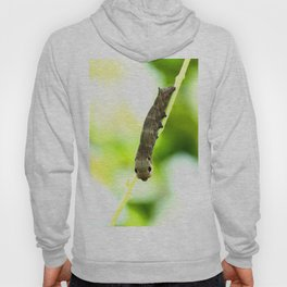 Caterpillar On A Green Plant #decor #society6 Hoody