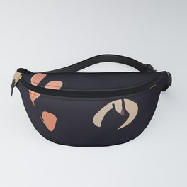 Clickphidgits ~ 3 of 3 Fanny Pack