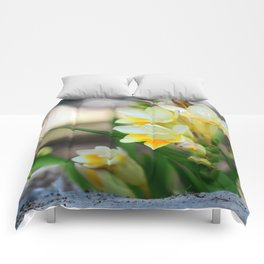 Yellow Freesia Comforters
