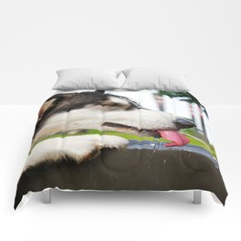 Refreshing Comforters