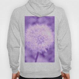 Sweet Dandelion in Lavender Hoody