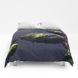 Zen Morning Comforters