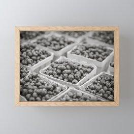 Blueberries in Black and White Framed Mini Art Print