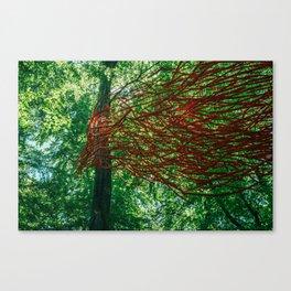 Wood bird Canvas Print