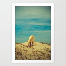 Wild Horses 7 - Color Art Print