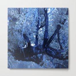 Winter in the woods 1 Metal Print