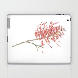 Grevillea Laptop & iPad Skin
