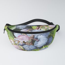 Ready to pick blueberries? Fanny Pack