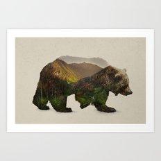 North American Brown Bear Art Print
