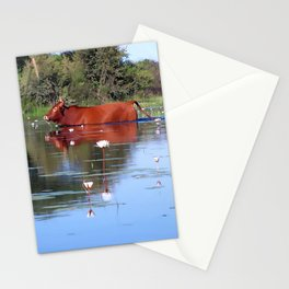 Swimming Cow Stationery Cards