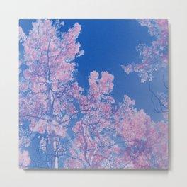 Pink Aspens Screen Print Metal Print