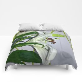 White lilie Comforters