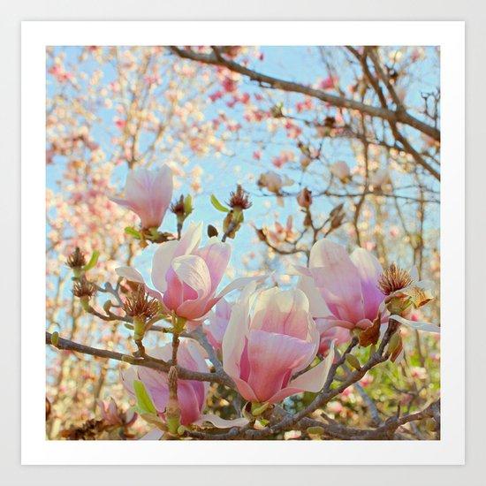 Sweet Magnolias Art Print