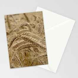 wheat field Stationery Cards