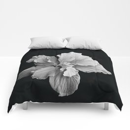 Hibiscus Drama - Black and Grey Comforters