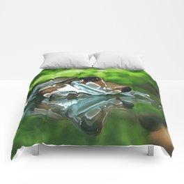 Amazon Milk Frog Comforters