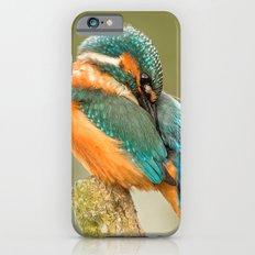 Kingfisher iPhone 6s Slim Case
