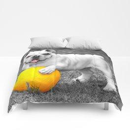 English bulldog white and the yellow ball Comforters